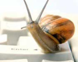 Computer or Internet browser is like snail